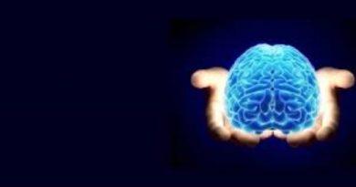 Developmental fluoride neurotoxicity: an updated review